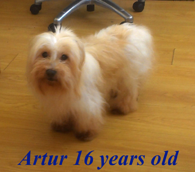 Artur 16 years old