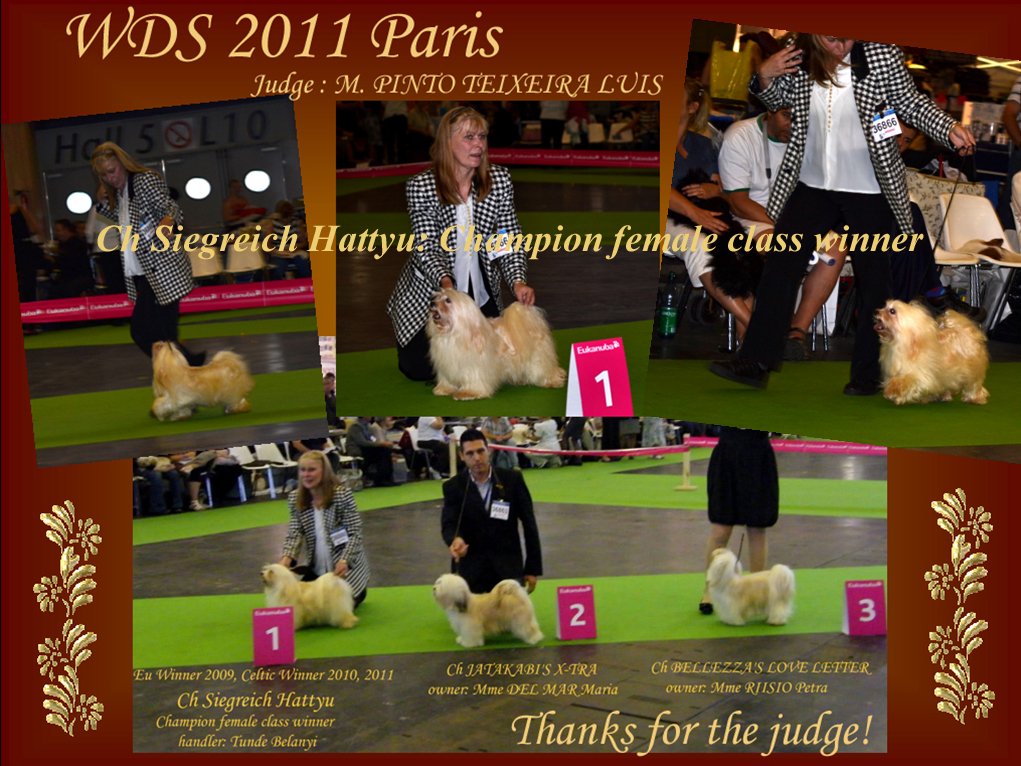 WDS 2011 Paris - Champion class winner female Ch Siegreich Hattyu